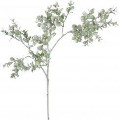 Blätterzweig