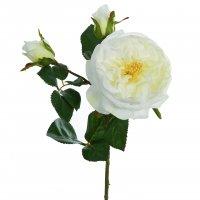 Kunstblume Rosenzweig V180090