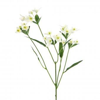 Kunstblume Waxblume V181835