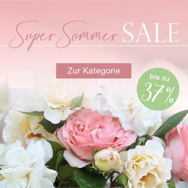 - Super Sommer Sale -